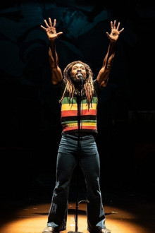 Get Up, Stand Up! The Bob Marley Story